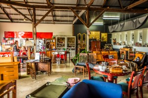The Shared - A Bohemian Shed