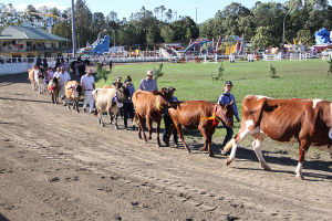 The Sunshine Coast Agricultural Show - Honouring the Centenary