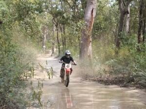 Gheerulla Trail – Mapleton Calling