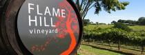 Toe Jam – Flame Hill Grape Stomp