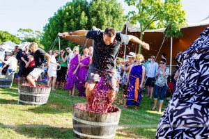 Toe Jam – Flame Hill Grape Stomp