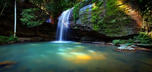 Experience the serenity of Buderim Falls