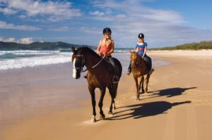 Equathon Horse Back Tours – get carried away...