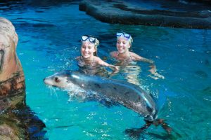 Watery Encounters – Underwater World: Mooloolaba