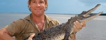 Steve Irwin - Wildlife Warrior