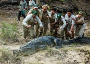steve-irwin-day-conservation