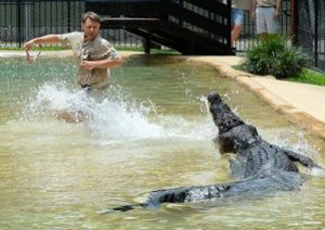 steve-irwin-day-crocodile-show