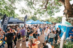 Crowd shot at the Noosa craft beer festival
