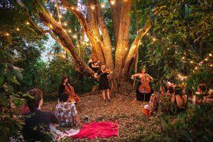 Jungle Love Music